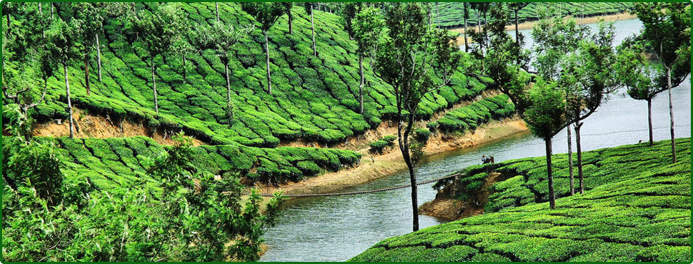 munnar tourist places